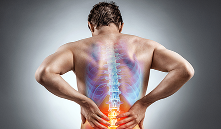 back pain and posture